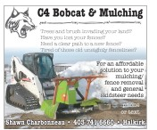 An affordable solution to your mulching/fence removal