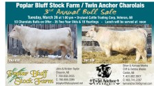 Poplar Bluff Stock Farm / Twin Anchor Charolais 3rd Annual Bull Sale