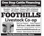 One Stop Cattle Financing