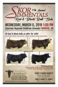 17th Annual SKOR SIMMENTALS Red & Black Bull Sale