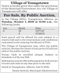 Village of Youngstown Public Auction