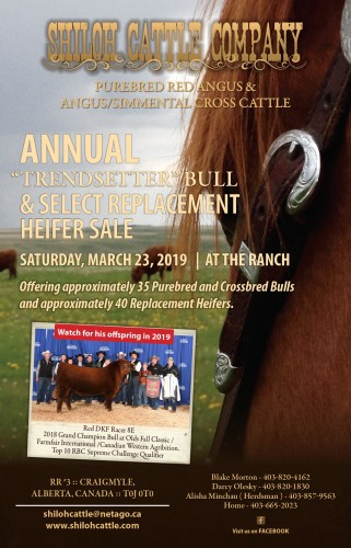 "ANNUAL ""TRENDSETTER"" BULL & SELECT REPLACEMENT HEIFER SALE"