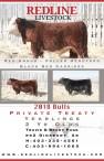 REDLINE LIVESTOCK Bull Sale