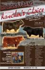 Ruzicka Farms 3rd Annual Rancher's Choice Simmental Bull Sale