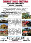 ONLINE TIMED AUCTION