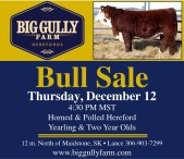 BigGully Farm Herefords Bull Sale
