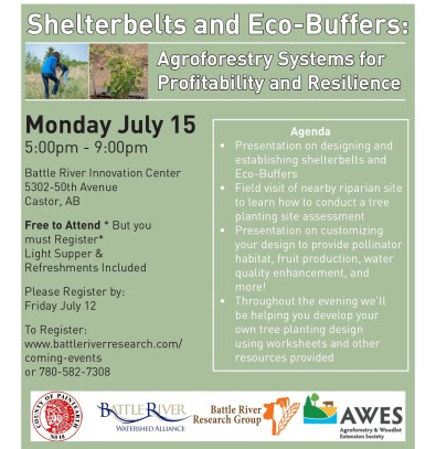 Shelterbelts and Eco-Buffers: Agroforestry Systems for Profitability and Resilience