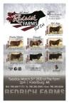 2nd Annual Redrich Farms Bull Sale