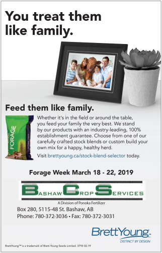 Feed your family the very best