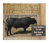 Smith Texas Longhorns 2 year old bulls for sale