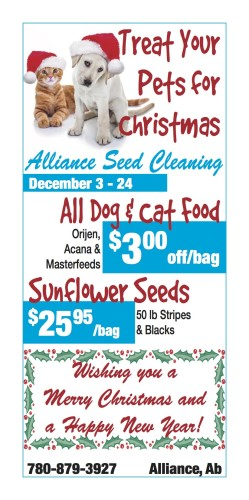 Treat Your Pets for Christmas