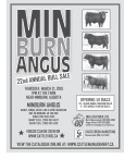 MIN BURN ANGUS 22nd ANNUAL BULL SALE