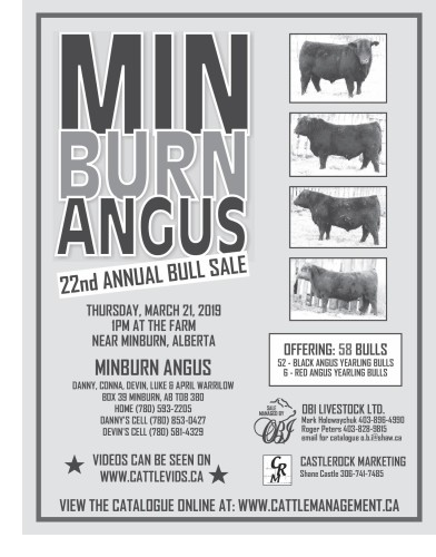 MIN BURN ANGUS 22nd ANNUAL BULL SALE
