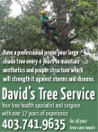 Your tree health specialist